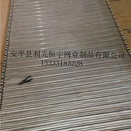 安平大量供应链条式 不锈钢网带 不锈钢人字型网带