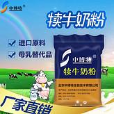 犊牛小牛刚出生的专用奶粉