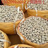 无锡滨湖区鹅卵石滤料价格