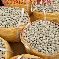 锡林郭勒盟东乌珠穆沁旗鹅卵石用途