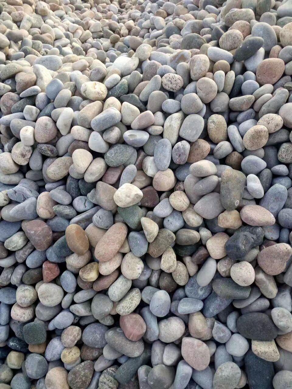 南阳淅川县鹅卵石/河卵石/海浪石供应