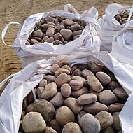 东营东营区鹅卵石生产基地