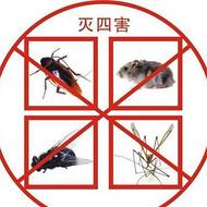 烟台莱山芝罘区灭老鼠?灭蟑螂方法常用方法
