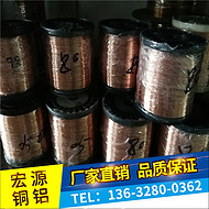 弹簧Qbe2铍青铜丝 进口磷铜线0.2 0.5 0.6 0.8 1.0
