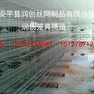 厂家热销新型鸽子笼 养殖专用鸽笼 肉鸽笼 三层12位 四层16位鸽笼