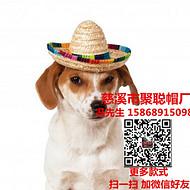 狗狗帽子宠物帽定做宠物用品加工厂宠物礼品生产厂家聚聪帽厂