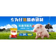小猪奶粉品牌乳猪奶粉供应商