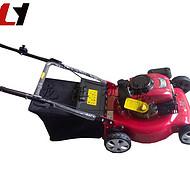 可定做手推式汽油草坪机打草机 手推式汽油草坪机打草机供应