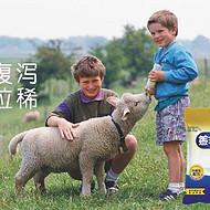 小羊代乳粉品牌厂家专卖