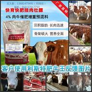 """肉牛怎样催肥才长得快,牛吃什么饲料长的快?利斯特""""肥牛王""""牛育肥好帮手"""