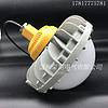 SZSW8160防爆LED工作灯 50W圆形LED防爆灯