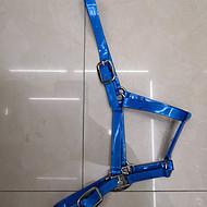 厂家直销 马术用品马具 PVC马笼头 胸带 水勒 缰绳 速赛