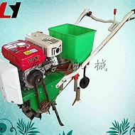 高产量汽油单行播种机 小型玉米单粒播种机