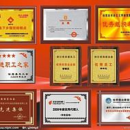 天津塘沽水晶奖杯供应开发区奖牌荣誉牌订做