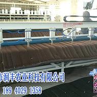 大棚棉被切被/包边机-黑龙江直销