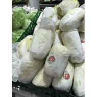 兰州娃娃菜包装纸,蔬菜保鲜包装纸