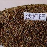 沙打旺种子一亩地多少种子
