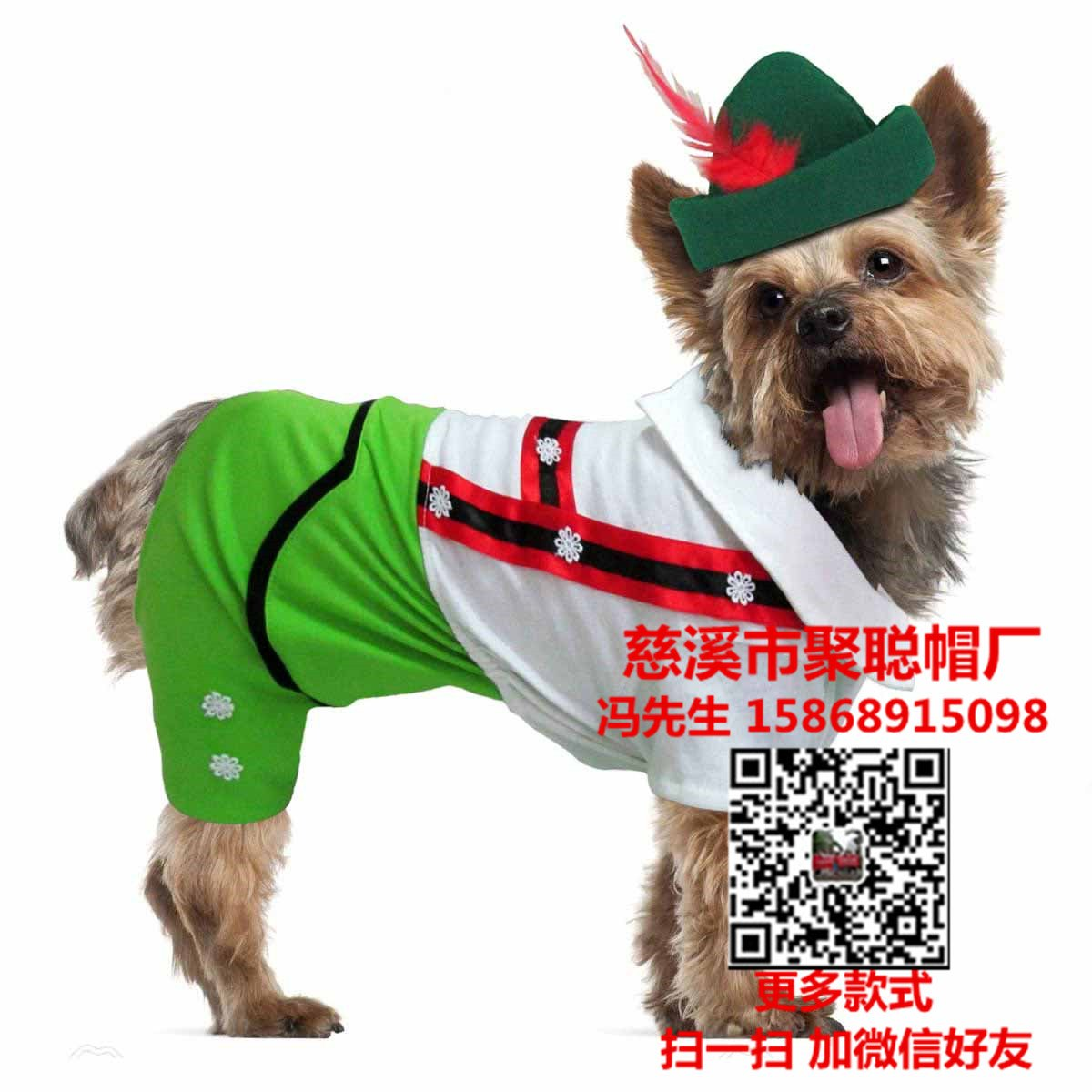 alpine-boy-halloween-dog-costume-1653_副本