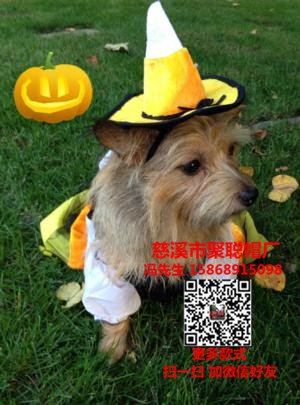 candy-corn-witch-dog-halloween-costume-17348 (1)_副本