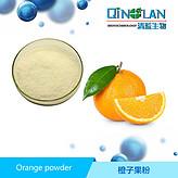 橙子果粉  甜橙提取物  水果粉 现货供应