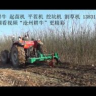 起苗机 植树机 苗木机械