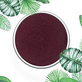 马奇果粉 马基莓粉 智利酒果粉 专业植提厂家生产 现货直销 全国包邮