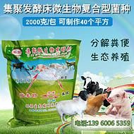异位发酵床专用菌种 养猪场污水处理 猪粪转有机肥发酵剂