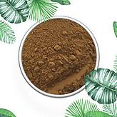 假树叶提取物 鲁斯可皂苷元20% 专业植提厂家生产 现货包邮