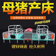 厂家直销母猪产床,复合漏缝板母猪产床,镀锌管单双体母猪产床