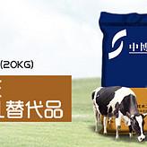 犊牛奶粉重要作用