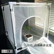 蚊虫饲养笼 、烟草局专用可拆卸养虫笼ZK-YCL-B 智科净享