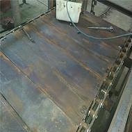 不锈钢链板机 块料用链板输送机