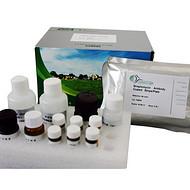 小鼠伴侣蛋白10(CPN10)酶联免疫分析试剂盒
