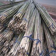 大量批发4米竹竿 江西4米苦竹杆