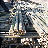 竹竿厂家批发5米6米蘑菇架竹竿 专业生产 发货及时