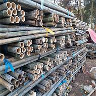 批发2米粗竹竿 绿化杆 支撑杆 竹竿尖 毛竹梢