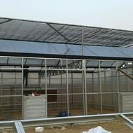 湖北武汉供应连栋蔬菜大棚 5万平方薄膜温室大棚承接山东温室厂家