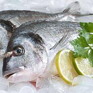 冰鲜海鲜进口专业清关代理公司