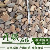 批发鹅卵石雨花石鱼缸石五彩石园林景观铺路工程石头石子