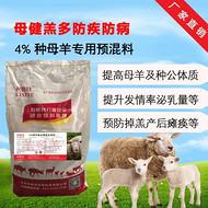 利斯特母羊饲料,母羊生完小羊后起不来怎么办?