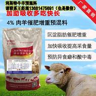 育肥羊怎么喂长的快?育肥羊喂哪种饲料长势好?