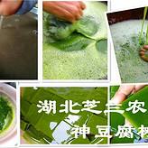 供应湖北利川高60-80厘米高神豆腐树苗观音豆腐树臭黄荆种苗