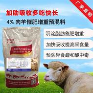 育肥羊飼料裏小蘇打什麼作用