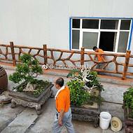 赣州市园林仿树藤栏杆安装效果 鹰潭鱼塘仿树枝围栏定制