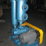 三叶罗茨真空泵 ;湖北 武汉市 中央供料