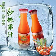 健康饮品沙棘汁厂家棘康沙棘果汁饮料