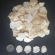 西洋参提取物 西洋参粉 西洋参浸膏 优质厂家 出口标准