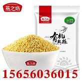 厂家批发黄小米 黄金苗黄小米