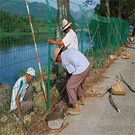 围栏网厂家_河堤护栏_护栏网围栏_沃达品牌供应_货源充足