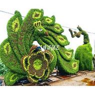 绿雕造型设计 盛诺园艺绿雕造型